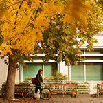 """exterior view of shields library at uc davis"""