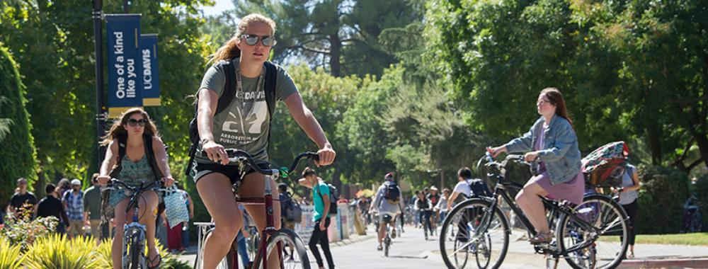 Photo of students biking at the UC Davis campus.